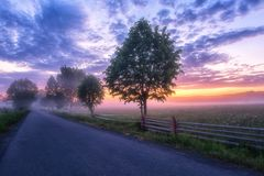 Beautiful sunrise in the flowering valley, scenic landscape with asphalt road and color cloudy sky royalty free stock photography