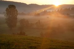Beautiful sunrise and fog Royalty Free Stock Photography