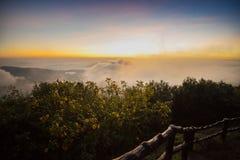Beautiful Sunrise on the fog mountain Stock Images