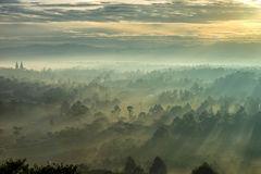 Beautiful sunrise with fog and sunlight in the forest mountain Royalty Free Stock Photo