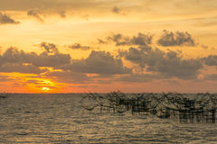 Beautiful sunrise and giant trap fish at Pakpra canal, Pattalung Stock Photography