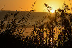 Beautiful sunrise in hagamon lake Stock Photography