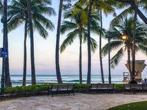 Sunrise through palm trees on tropical beach Stock Image