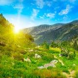 Beautiful sunrise Stock Photography