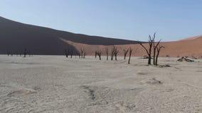 Beautiful sunrise landscape of hidden Dead Vlei in Namib desert stock video