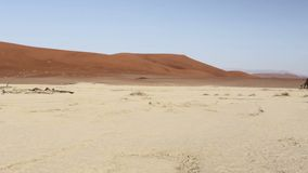 Beautiful sunrise landscape of hidden Dead Vlei in Namib desert stock video footage