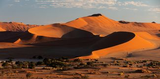 Beautiful landscape Hidden Vlei in Namibia, Africa. Beautiful sunrise landscape, hidden Dead Vlei in Namib desert, Namibia, Africa wilderness landscape royalty free stock image
