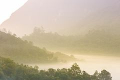 Beautiful sunrise in a misty rainforest. Royalty Free Stock Image