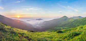 Beautiful sunrise in mountains with white fog below spring summe Stock Photography