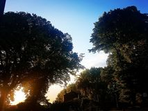 Beautiful sunrise. nice sunlight in the city park royalty free stock photo