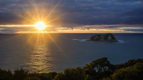 Beautiful sunrise on the ocean. In North Island of New Zealand Royalty Free Stock Photos