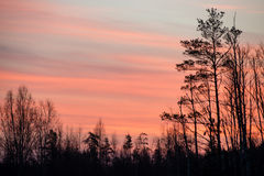 Beautiful sunrise over country lake Royalty Free Stock Image