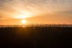 Beautiful sunrise over country lake Royalty Free Stock Photo