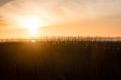 Beautiful sunrise over country lake Stock Photography