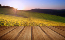 Beautiful sunrise over field of rapeseed in countryside in Sprin Royalty Free Stock Photo