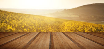 Beautiful sunrise over field of rapeseed in countryside in Sprin Royalty Free Stock Images