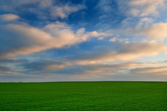 Beautiful sunrise over the green field Stock Photography