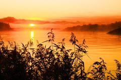 Beautiful sunrise over lake. Scenic view of beautiful sunrise over lake, mist in background, silhouetted vegetation in foreground stock image