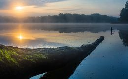 Beautiful sunrise over misty lake. Royalty Free Stock Photo