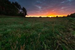 Beautiful sunrise over misty meadow Stock Images