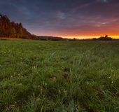 Beautiful sunrise over misty meadow Royalty Free Stock Photography