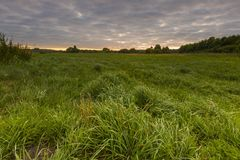 Beautiful sunrise over misty meadow Royalty Free Stock Images