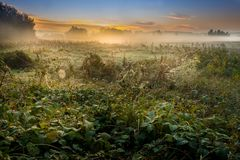 A beautiful sunrise over a misty meadow and a river Stock Photos