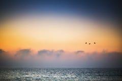 Beautiful sunrise over the sea Stock Image