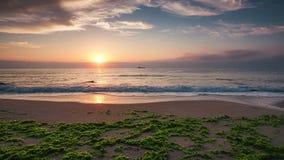 Beautiful sunrise over the sea. Splashing waves on the beach, video. stock footage