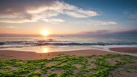 Beautiful sunrise over the sea, video stock video