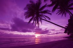 Beautiful sunrise in paradise Stock Photos