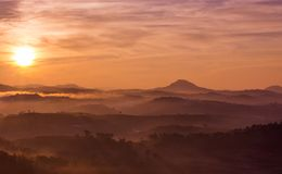 Sunrise on a pine hill. Beautiful sunrise on a pine hill at Dalat, Vietnam Royalty Free Stock Photos