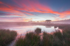 Beautiful Sunrise by a pond in Holland. Royalty Free Stock Image