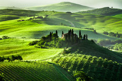 Beautiful sunrise in San Quirico d'Orcia, Tuscany Royalty Free Stock Images