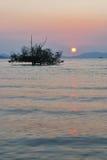 Beautiful sunrise and silhouette tree Stock Image