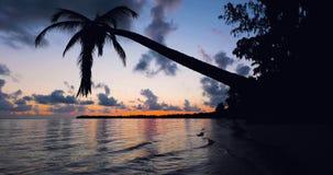 Beautiful sunrise video on tropical island beach Bavaro. Punta Cana resort, Dominican Republic.  stock video