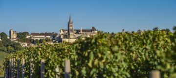 Beautiful sunrise village of Saint Emilion, Vineyard, Gironde. France, Europe stock photo