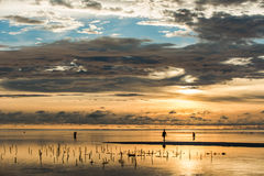 Beautiful sunrise in Zanzibar Island Royalty Free Stock Photo
