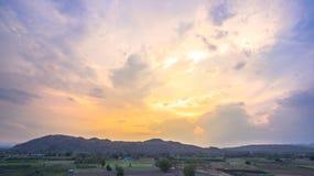 Beautiful sunset above corn fields Royalty Free Stock Photo