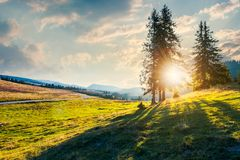 Beautiful sunset in Apuseni Natural Park. Sunburst through trees. beautiful sunset in Apuseni Natural Park. wonderful nature of Romania mountains stock photography