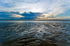 Beautiful sunset on the beach Royalty Free Stock Photo