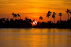 Sunset over coconut palm tree on the beach in island Koh Chang, Thailand Royalty Free Stock Photos