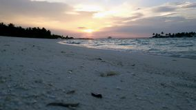 Beautiful sunset on the beach overlooking the palm trees and the ocean in the Maldives. 4k stock footage