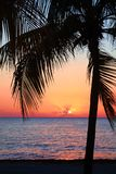 Beautiful sunset on the beach, sun goes down to the sea. Palm on the bayshore. Calm ambient, rest and relaxation concept. Stunning. View to the horizon royalty free stock image