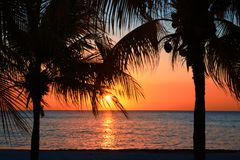Beautiful sunset on the beach, sun goes down to the sea through two Palm trees on the bayshore. Calm ambient, rest and relaxation royalty free stock images