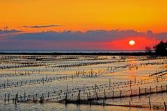 Beautiful Sunset at beach in Tainan Royalty Free Stock Photos