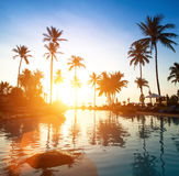 Beautiful sunset at beach in the tropics. Travel. Stock Photos