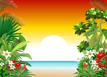 Beautiful Sunset In Beach View With Ivy Flower Cartoon