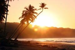 Beautiful Sunset in Caribbean Stock Image