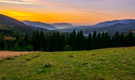 Beautiful sunset in Carpathian mountains. View in to the foggy valley of Synevyr National park. row of Spruce trees on the meadow in the foreground royalty free stock photos